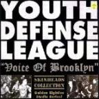 456_youth defense league-voice of brooklyn.jpg